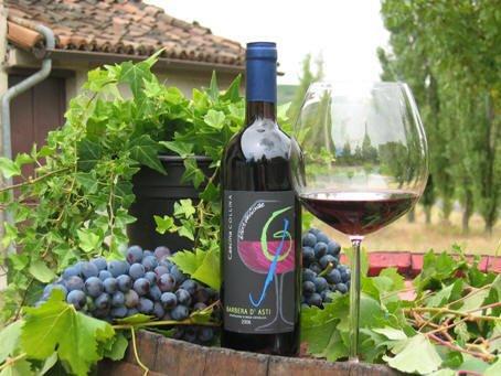 vingårdsferie piemonte