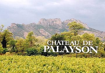 Utsikt fra Château de Palayson