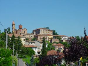 San Merzano Oliveto