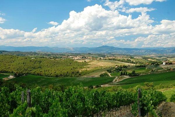 vingårdsferie toscana